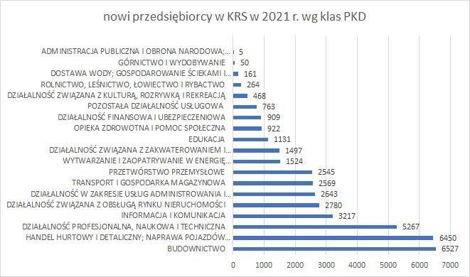 nowe firmy w KRS wg klas PKD 2021 r.