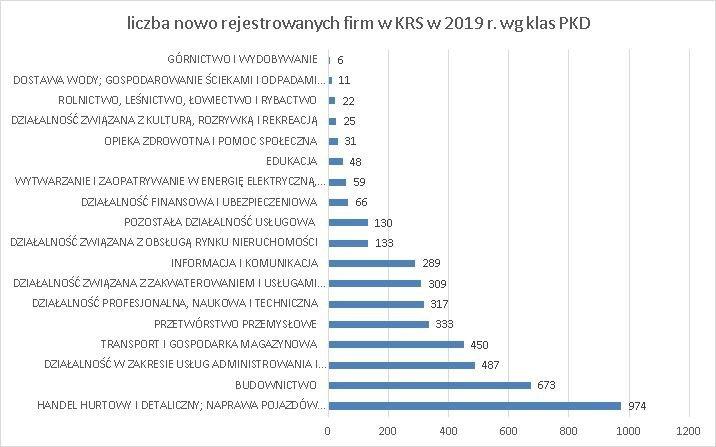 firmy z kapitałem zagranicznym w Polsce czerwiec 2019 wg klas PKD