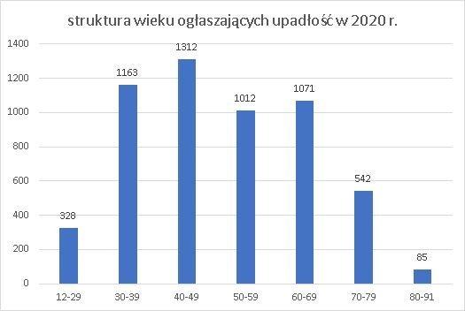upadłość konsumencka struktura wieku lipiec 2020 r.